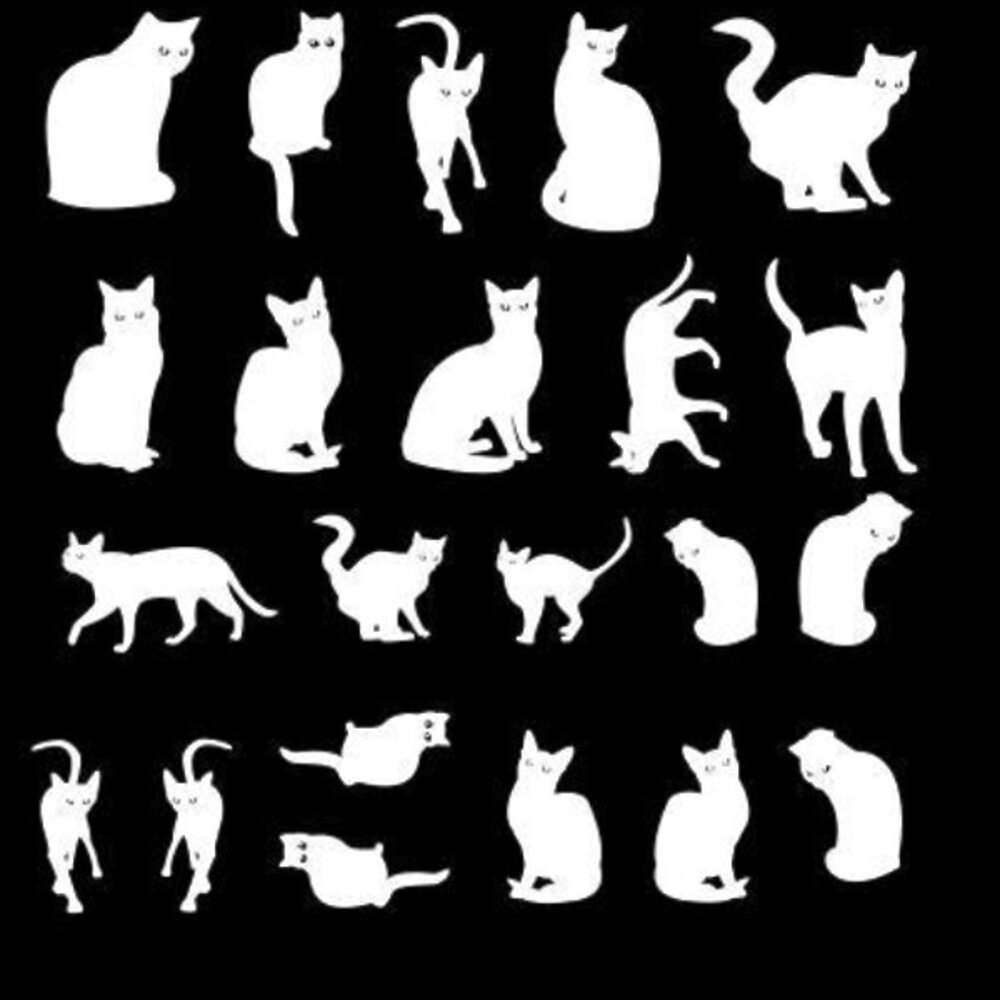 Etched Cat Silhouette Pattern