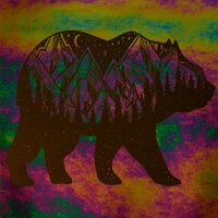 ArtGlassSupplies.com Etched Luminescent Bear Pattern COE90
