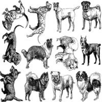Dog Breed Decal Sheet