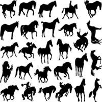 Horse Silhouettes Decal Sheet