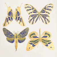 Two Color Large Butterflies Decal Sheet